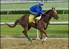 Greeley's Galaxy, on track at Churchill Downs.