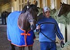 "Uncle Mo arrived in New York on Wednesday, April 6, ready for the Wood Memorial.<br><a target=""blank"" href=""http://www.bloodhorse.com/horse-racing/photo-store?ref=http%3A%2F%2Fpictopia.com%2Fperl%2Fgal%3Fprovider_id%3D368%26ptp_photo_id%3D9478824%26ref%3Dstory"">Order This Photo</a>"