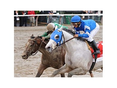 "Capt. Candyman Can (left) and Vineyard Haven fight to the finish in the King's Bishop.<br><a target=""blank"" href=""http://www.bloodhorse.com/horse-racing/photo-store?ref=http%3A%2F%2Fpictopia.com%2Fperl%2Fgal%3Fprovider_id%3D368%26ptp_photo_id%3D8443357%26ref%3Dstory"">Order This Photo</a>"