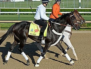 Bolo at Churchill Downs April 27.