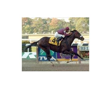 Front-running Champagne Stakes winner War Pass heads to the Breeders' Cup Juvenile