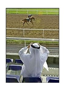 An Emirates man watches horses on the track at Nad Al Sheba.
