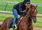 "Far Right<br><a target=""blank"" href=""http://photos.bloodhorse.com/TripleCrown/2015-Triple-Crown/Kentucky-Derby-Workouts/i-LZzWVkD"">Order This Photo</a>"