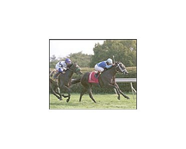 Ocean Drive winning the Appalachian, Friday at Keeneland.