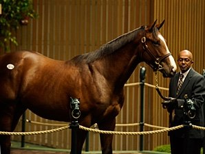 A.P. Indy-Balance Colt Brings $4.2 Million