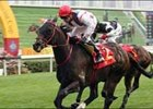 Scintillation Wins Centenary Sprint Cup; Silent Witness 9th