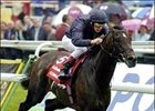 Scorpion carries Frankie Dettori wire-to-wire for the rider's third St. Leger win.