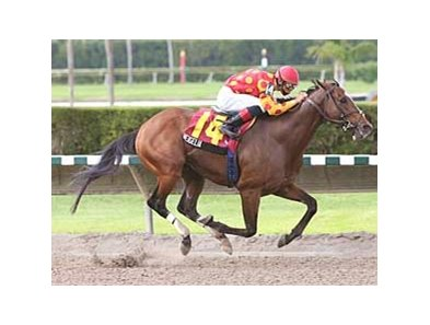 Wiegelia's win in the Ponche Handicap was one of his eight stakes victories.