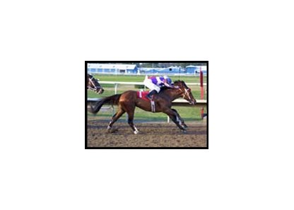 Easyfromthegitgo, whose previous stakes win was this Lecomte victory, won Friday's Iowa Derby.