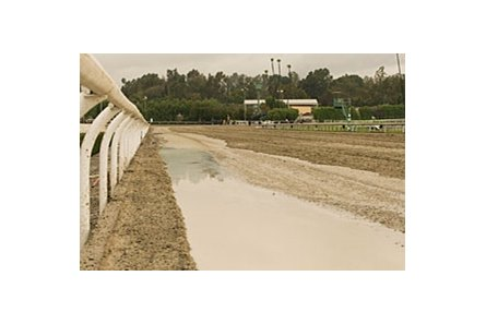 A liquid binder could be the cure for Santa Anita's ailing Cushion Track.
