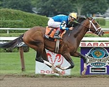 Seven Entered for Travers; Purge is Morning Line Favorite