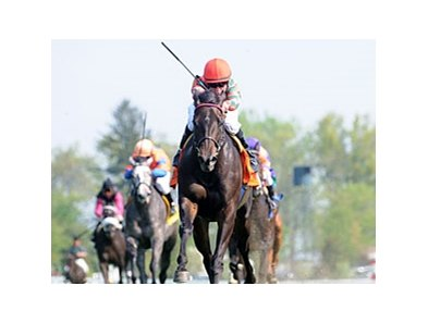 "Check the Label is in control down the stretch in the Appalachian Stakes.<br><a target=""blank"" href=""http://www.bloodhorse.com/horse-racing/photo-store?ref=http%3A%2F%2Fpictopia.com%2Fperl%2Fgal%3Fprovider_id%3D368%26ptp_photo_id%3D8894440%26ref%3Dstory"">Order This Photo</a>"