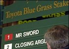 High Limit Favored in Blue Grass Stakes