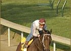 Buddy Gil, breezing under jockey Gay Stevens.