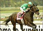 Grade I Star Southern Image Retired