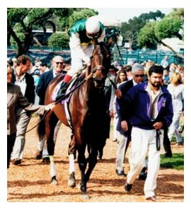 Hidden Lake at the 1997 Breeders' Cup.