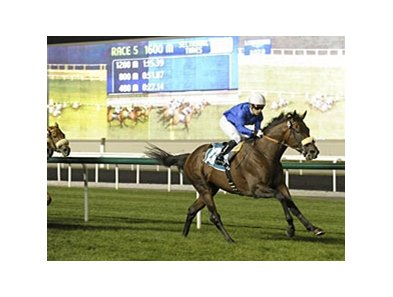Do It All runs away with the Zabeel Mile at Meydan.
