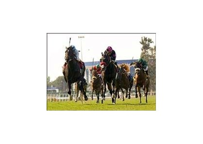 "After Market, left, outruns crowd favorite Lava Man, center, to win the Charles Whittingham Memorial Handicap.<br><a target=""blank"" href=""http://www.bloodhorse.com/horse-racing/photo-store?ref=http%3A%2F%2Fpictopia.com%2Fperl%2Fgal%3Fprovider_id%3D368%26ptp_photo_id%3D1389181%26ref%3Dstory"">Order This Photo</a>"