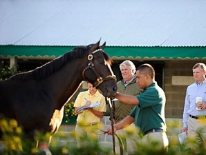 Keeneland Sale Remains Stronger