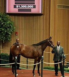 Two Seven-Figure Yearlings at Keeneland