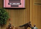Hip No. 45, was purchased by Donnato Lanni, on behalf of Sikura/Lunsford, from the Brookdale Sales consignment.
