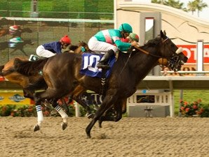 Zenyatta Cuts Perfection Close in Hirsch Win