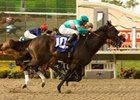 "Zenyatta won the 2009 Clement Hirsch by a head over Anabaa's Creation.<br><a target=""blank"" href=""http://www.bloodhorse.com/horse-racing/photo-store?ref=http%3A%2F%2Fpictopia.com%2Fperl%2Fgal%3Fprovider_id%3D368%26ptp_photo_id%3D8394817%26ref%3Dstory"">Order This Photo</a>"