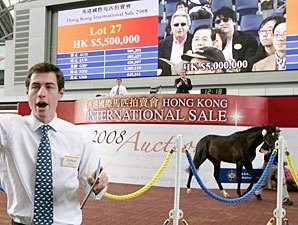Redoute's Choice Colt Tops HKIS
