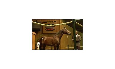 Saint Ballado colt topped the Keeneland sale at $4-million.