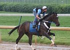 Rachel Alexandra worked Monday at Churchill, but her Belmont status has not yet been announced.