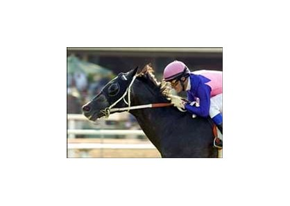 T.H. Approval, with Alex Solis aboard, wins the unset Breeders' Cup Handicap, Sunday at Hollywood Park.