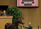 Giant's Causeway Colt Tops Early at Keeneland