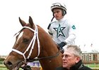 Cowtown Cat has been retired from racing and will stand at Journeyman Stud in Florida for a 2009 fee of $8,000.