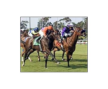 Osidy, foreground, overtakes Willow O Wisp, right, to win the Will Rogers Stakes, Saturday at Hollywood Park.