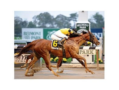 "Belle of the Hall<br><a target=""blank"" href=""http://photos.bloodhorse.com/AtTheRaces-1/at-the-races-2012/22274956_jFd5jM#!i=2169888244&k=FHht5kh"">Order This Photo</a>"