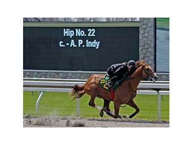 The video board announces the work of Hip 22 at the Keeneland 2-year-old sale.