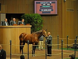 Blind Luck's Dam Brings $1.85 Million