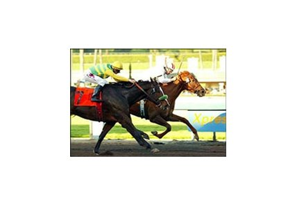 Girl Warrior Scratches Out El Encino Victory - BloodHorse