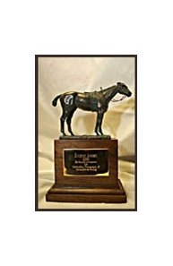 2001 Eclipse Award won by Barbara Livingston and stolen the night of the awards in Miami, 2002.