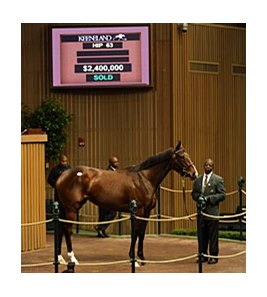 Buster's Ready, hip 63, sold at the Keeneland November Sale for $2.4 million.