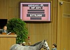 Flashy Gray Sells for $775,000 at Keeneland
