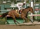 2000 Champion Sprinter Kona Gold to reside at the Kentucky Horse Park.