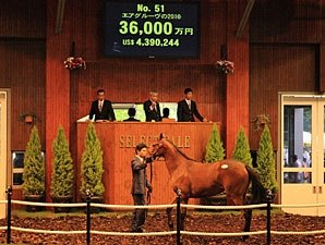 Yearling Filly Sets Record at Japanese Sale