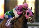 Breeders' Cup Classic winner Saint Liam was euthanized Tuesday.<br>