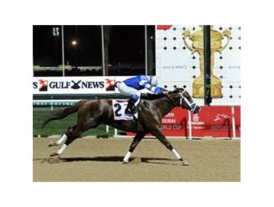 Big City Man pulls away in the Dubai Golden Shaheen.