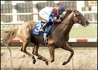 Azeri is the only unanimous Eclipse Award winner for 2002.