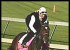 Take Charge Lady Is Morning Line Favorite For Kentucky Oaks