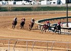 Great Lakes Downs has drawn initial looks from racing interests.