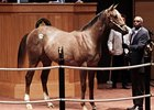 Surge Continues at Fasig-Tipton October Sale