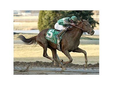Snack, shown winning the 2005 WEBN.